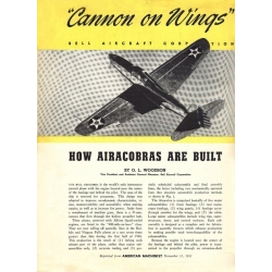Aircobra Cannon on Wings