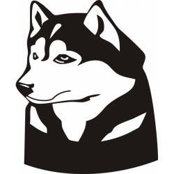 Aviat Aircraft Husky Decal/Sticker 12.5''wide x 15.25''high!