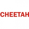 Grumman Cheetah Aircraft Decal,Sticker!