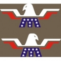 Mooney Aircraft Emblem,
