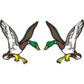 Mallard Duck Aircraft Decals,Stickers!