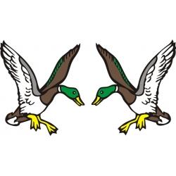 Mallard Duck Aircraft Decals,Stickers!