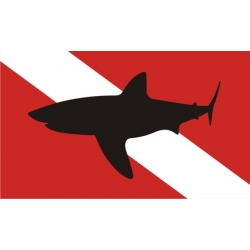 "Shark2 Boat Decal Vinyl Sticker 10"" wide by 5.9"" high! $10.95"