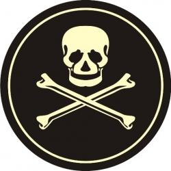 """2 Skull Decals/Stickers 6"""" round!"""