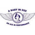 Corben Baby Ace Aircraft Logo,Decals!