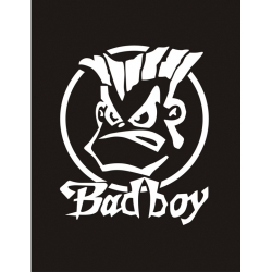 Badboy Bad Boy Sticker/Decal!