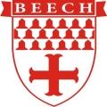 Beechcraft Medallion Aircraft Emblem Decal,Sticker!