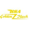 "BSA Golden Flash Decals/Stickers!  9.5"" wide by 3.75"" high!"
