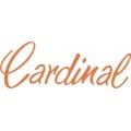 Cessna Cardinal Aircraft Decal,Logo 4 1/4''h x 10''w!