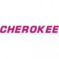 Piper Cherokee Aircraft Decal,Sticker 1 1/4''high x 12 3/4''wide!