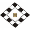 Citabria B Aircraft Logo,Decal/Sticker 10''h x 13''w!
