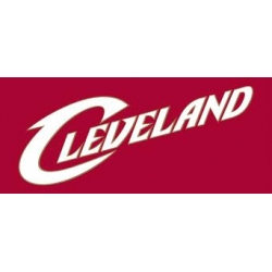 Cleveland Brakes 8 inches External Assembly 30-66 to 30-74B Parts List