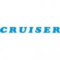 Piper Cruiser Aircraft Decal,Sticker 1.5''high x 10''wide!