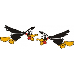Flying Duck Aircraft Decal/Stickers!