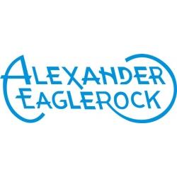 Alexander Eaglerock Aircraft Logo,Decals!