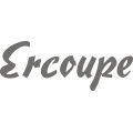 Ercoupe Aircraft Logo,Decals!
