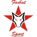 Foxbat Aircraft Logo,Decals!