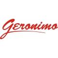 Piper Geronimo Aircraft Logo,Decals!
