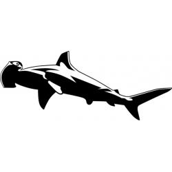 """Hammerhead Shark Sticker/Decal 12"""" wide by 4.87"""" high! $9.95"""