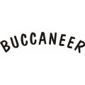 Lake Buccaneer Aircraft Decal/Stickers!