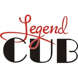 Legend Cub Aircraft Decal/Sticker 10.5''wide x 6.5''high!