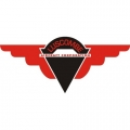 Luscombe Aircraft Corporation Logo  $29.95