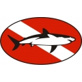 "Sharky Boat Decal Vinyl Sticker 10"" wide by 5.8"" high! $9.95"