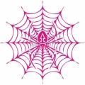 Spider Web! Sticker/Decals!