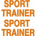 Sport Trainer Aircraft Decal,Sticker 3.5''high x 7''wide!