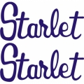 Starlet Aircraft Decal,Sticker 3''high x 6.5''wide!