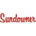 Beechcraft Sundowner Aircraft Decal/Sticker 2 1/2''h x 9 1/2''w!