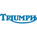 "Triumph Decal/Sticker! 10.5"" wide x 3"" high"