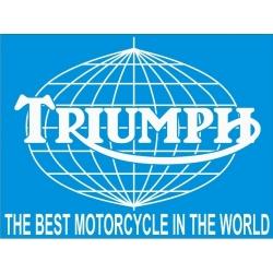 Triumph The Best ! Sticker /Decals Vinyl Graphics!
