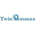 Twin Bonanza Aircraft Decal/Sticker 2.25''h x 13.5''w!