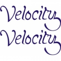 Velocity Aircraft Decal,Sticker 1.25''high x 2.75''wide!